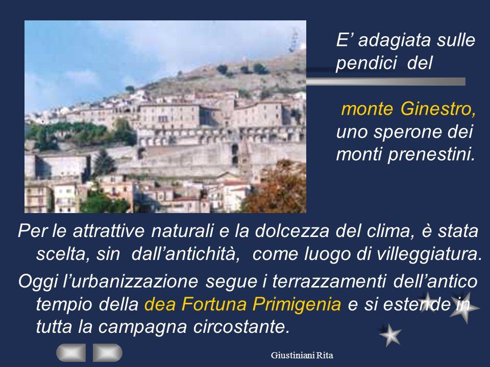 E' adagiata sulle pendici del monte Ginestro, uno sperone dei monti prenestini.