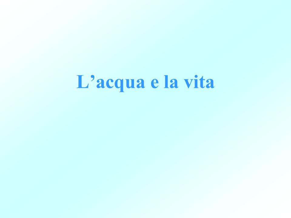 L'acqua e la vita
