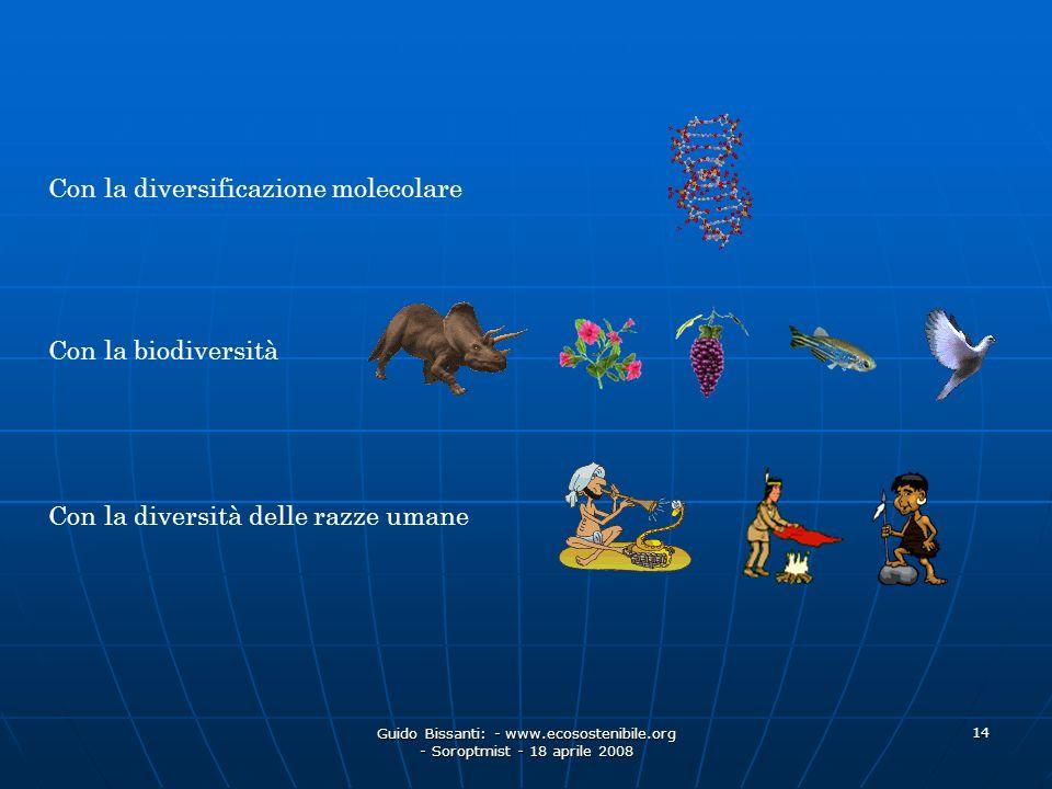 Con la diversificazione molecolare