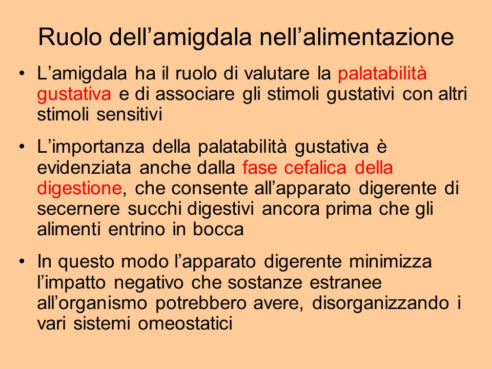 Ruolo dell'amigdala nell'alimentazione