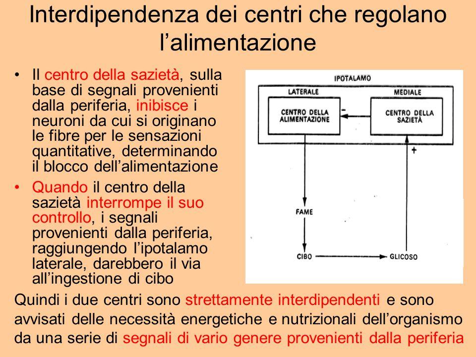 Interdipendenza dei centri che regolano l'alimentazione