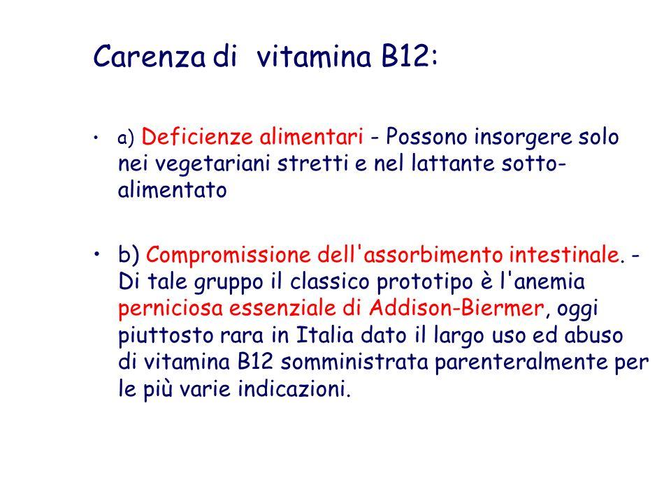 Carenza di vitamina B12: a) Deficienze alimentari - Possono insorgere solo nei vegetariani stretti e nel lattante sotto-alimentato.
