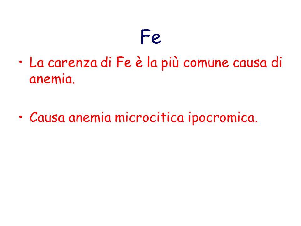 Fe La carenza di Fe è la più comune causa di anemia.