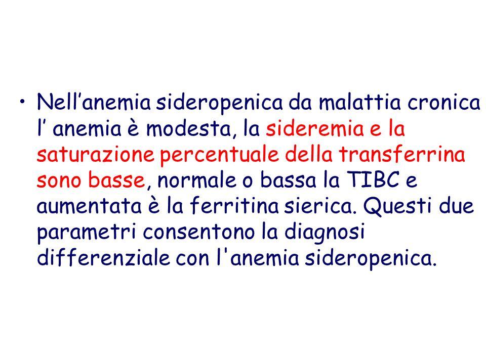 Nell'anemia sideropenica da malattia cronica l' anemia è modesta, la sideremia e la saturazione percentuale della transferrina sono basse, normale o bassa la TIBC e aumentata è la ferritina sierica.