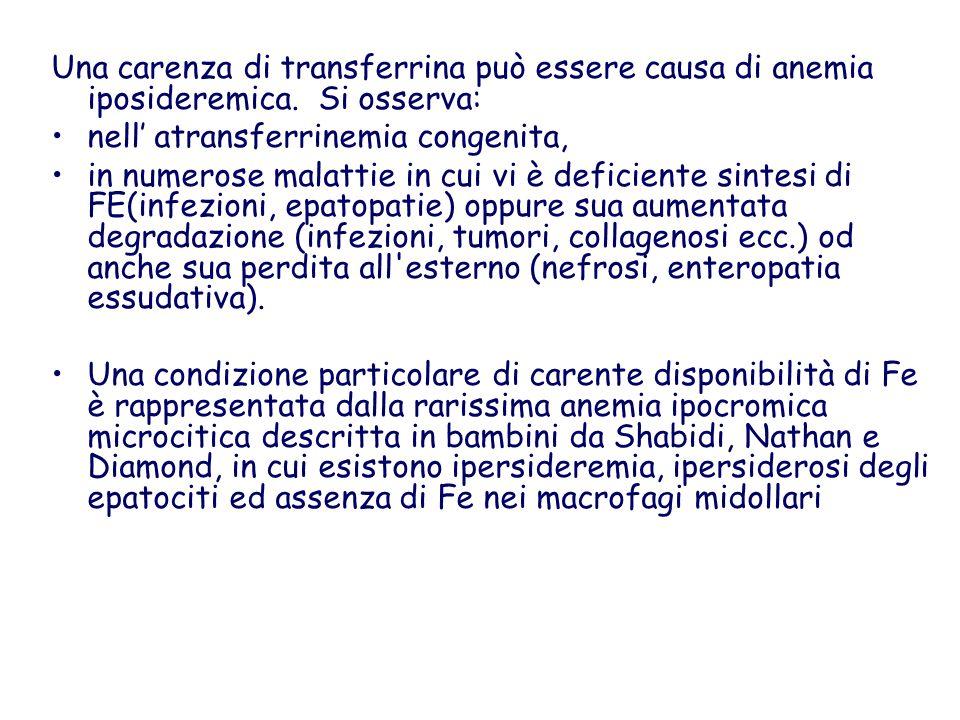 Una carenza di transferrina può essere causa di anemia iposideremica