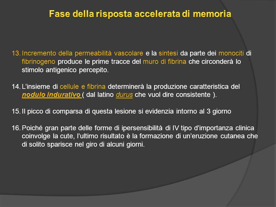 Fase della risposta accelerata di memoria