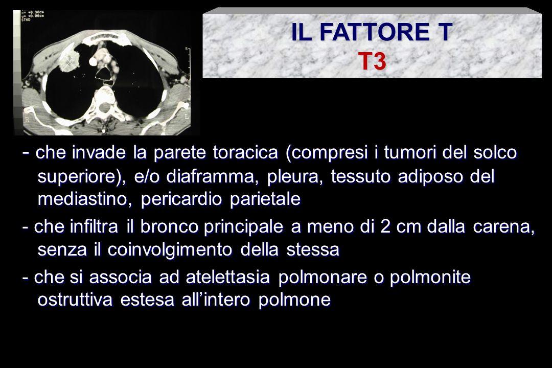 IL FATTORE T T3.