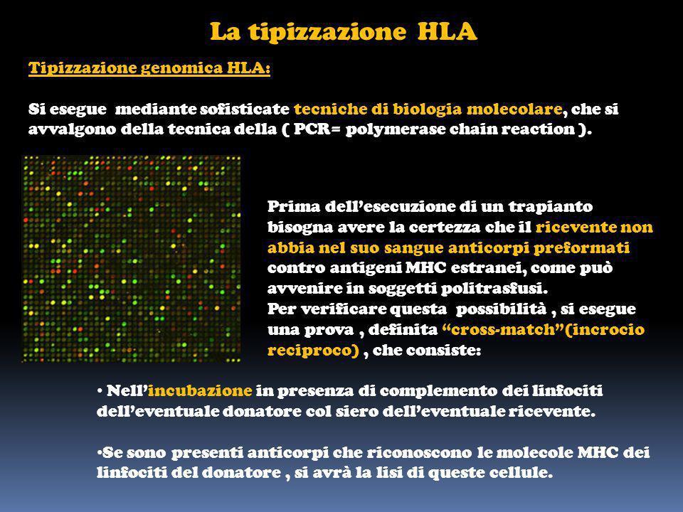 La tipizzazione HLA Tipizzazione genomica HLA: