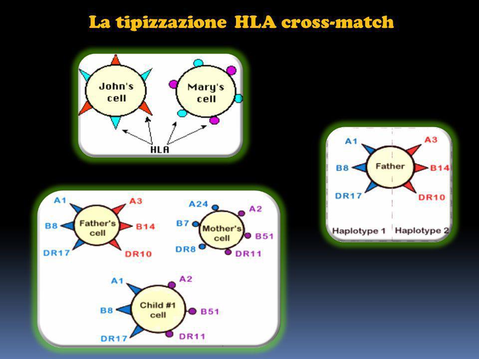 La tipizzazione HLA cross-match