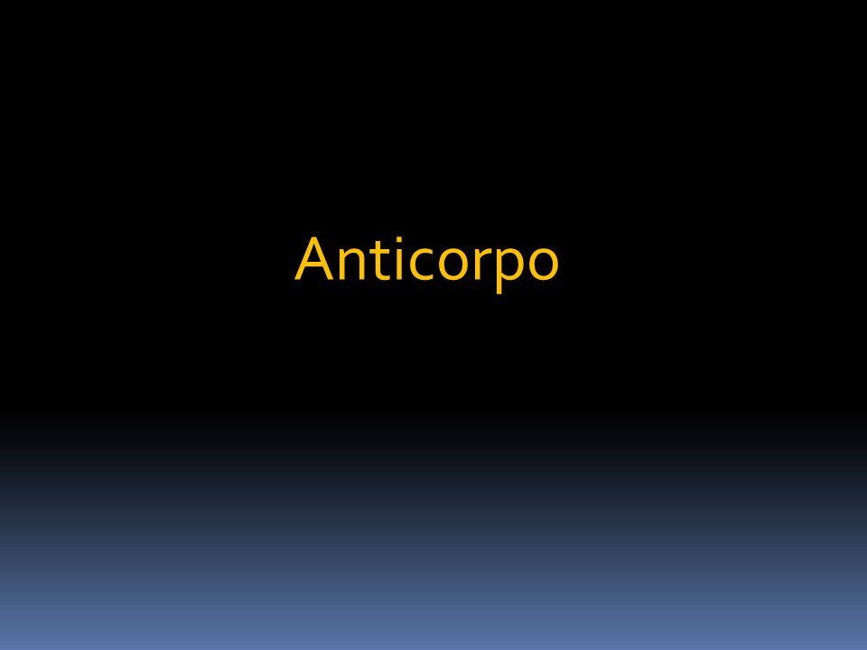 Anticorpo