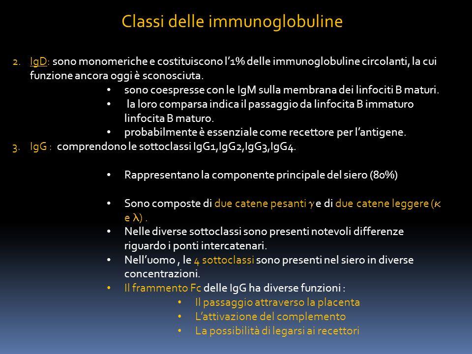 Classi delle immunoglobuline