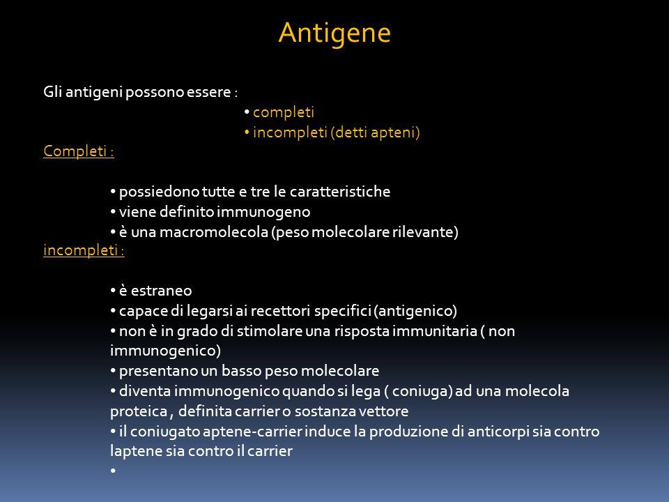 Antigene Gli antigeni possono essere : completi