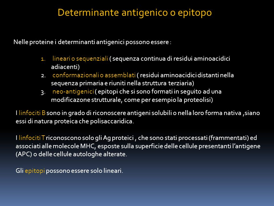 Determinante antigenico o epitopo