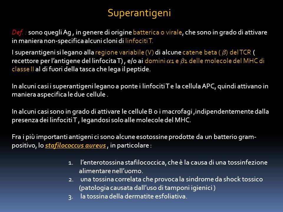 Superantigeni