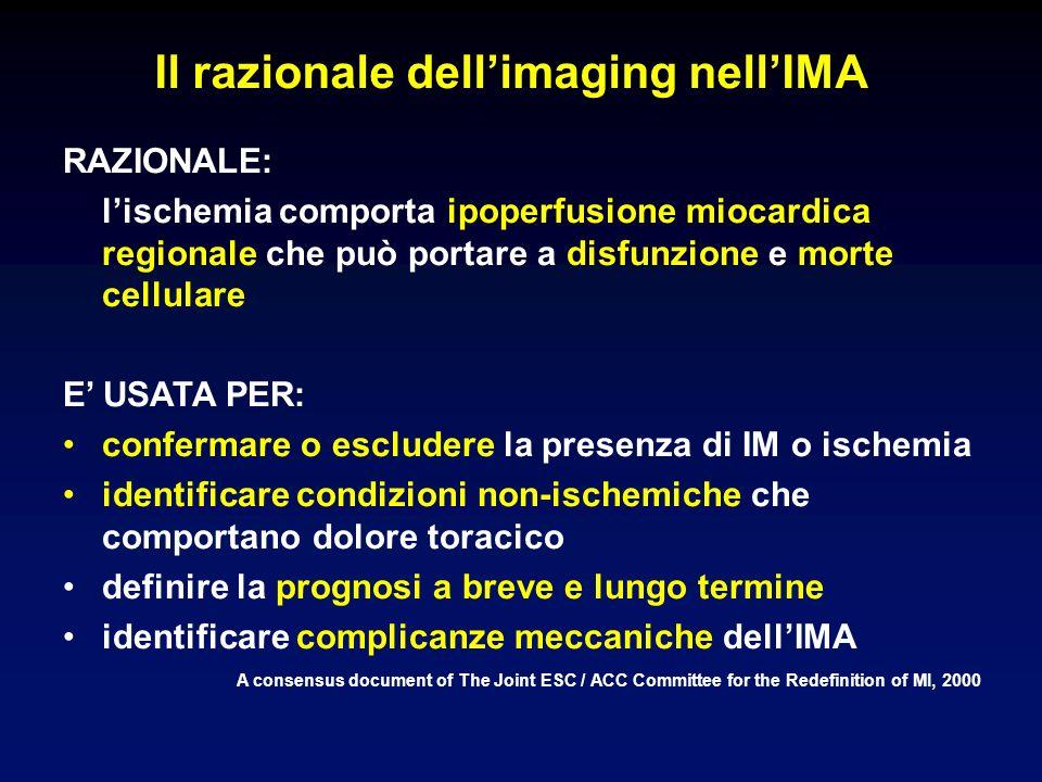 Il razionale dell'imaging nell'IMA