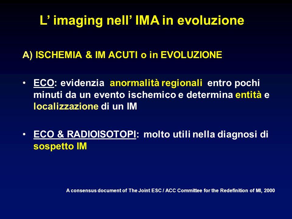 L' imaging nell' IMA in evoluzione