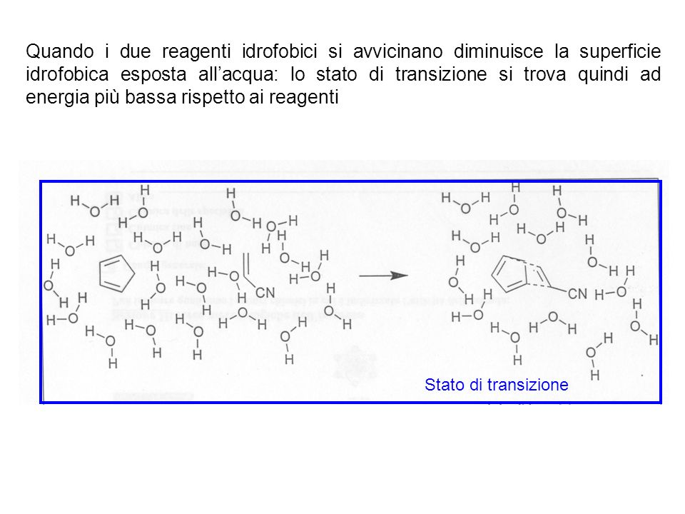 Quando i due reagenti idrofobici si avvicinano diminuisce la superficie idrofobica esposta all'acqua: lo stato di transizione si trova quindi ad energia più bassa rispetto ai reagenti