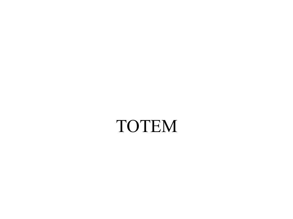 TOTEM