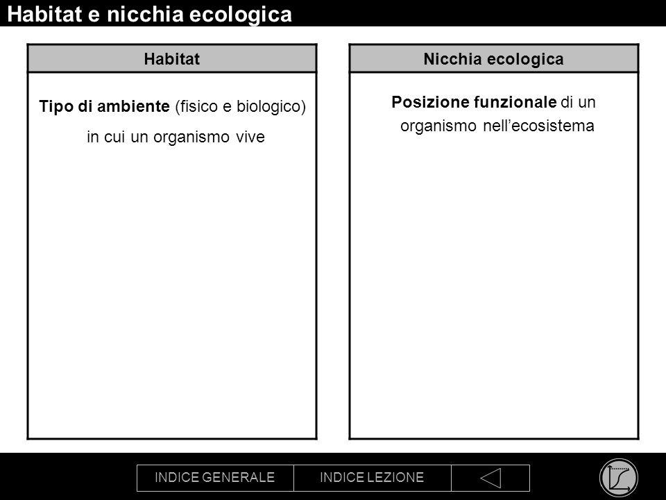 Habitat e nicchia ecologica