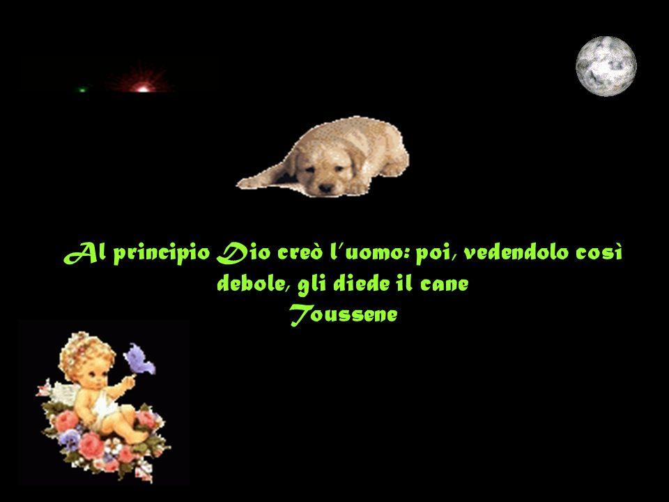 Al principio Dio creò l'uomo: poi, vedendolo così debole, gli diede il cane Toussene