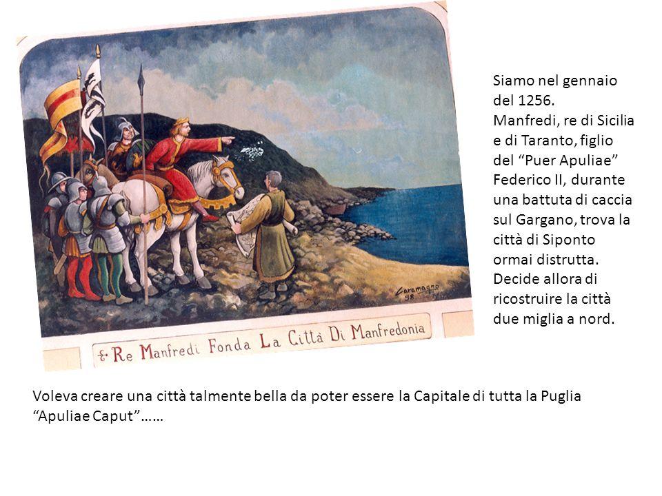 Siamo nel gennaio del 1256.