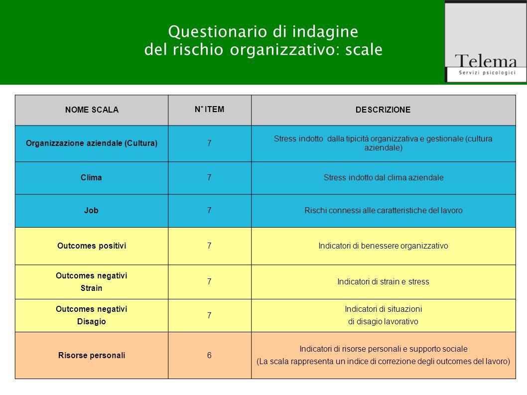 Organizzazione aziendale (Cultura)
