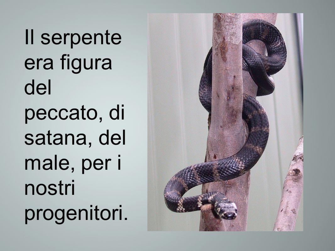 Il serpente era figura del peccato, di satana, del male, per i nostri progenitori.