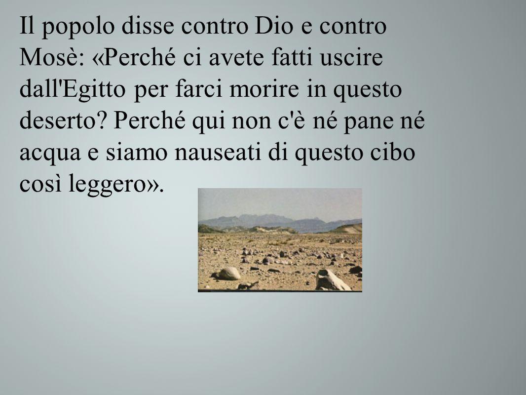 Il popolo disse contro Dio e contro Mosè: «Perché ci avete fatti uscire dall Egitto per farci morire in questo deserto.