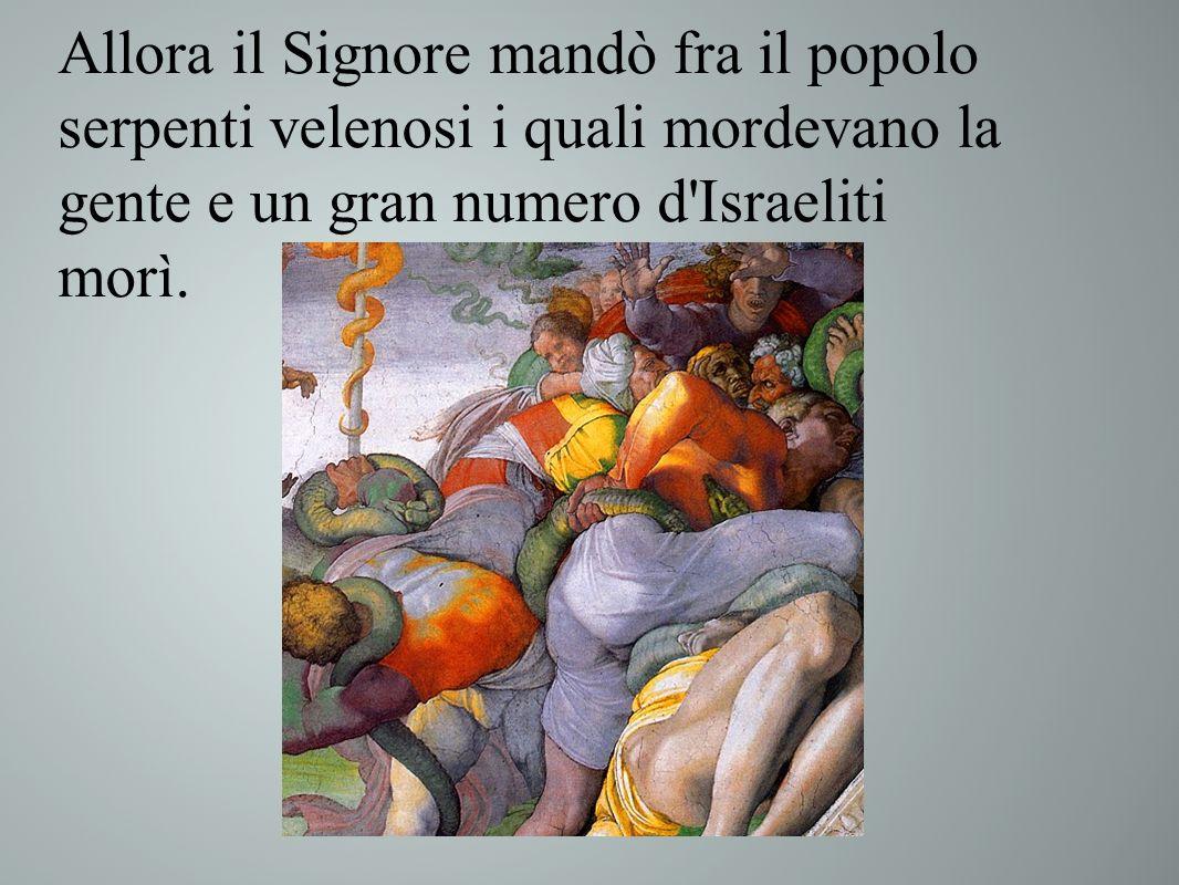 Allora il Signore mandò fra il popolo serpenti velenosi i quali mordevano la gente e un gran numero d Israeliti morì.