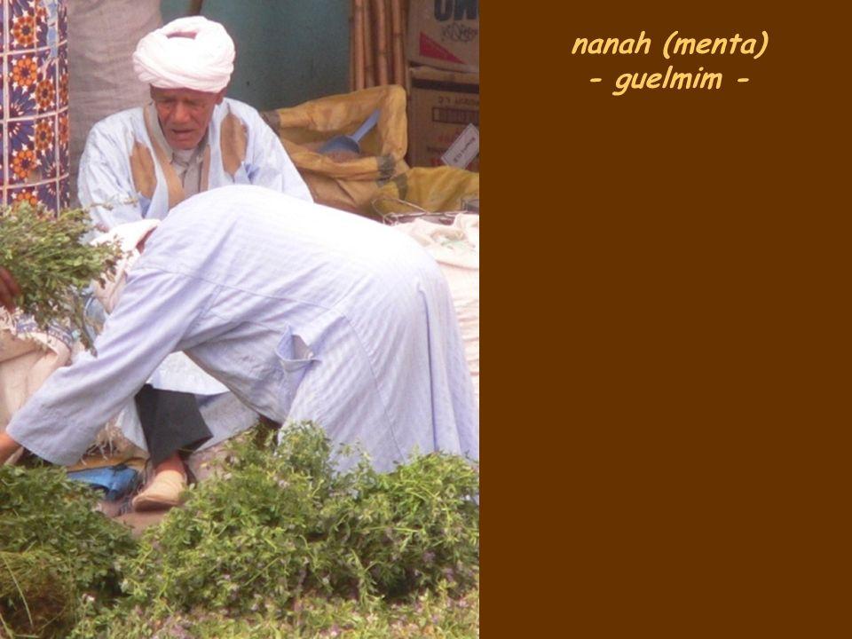 nanah (menta) - guelmim -