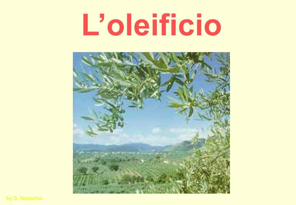 L'oleificio by S. Nocerino
