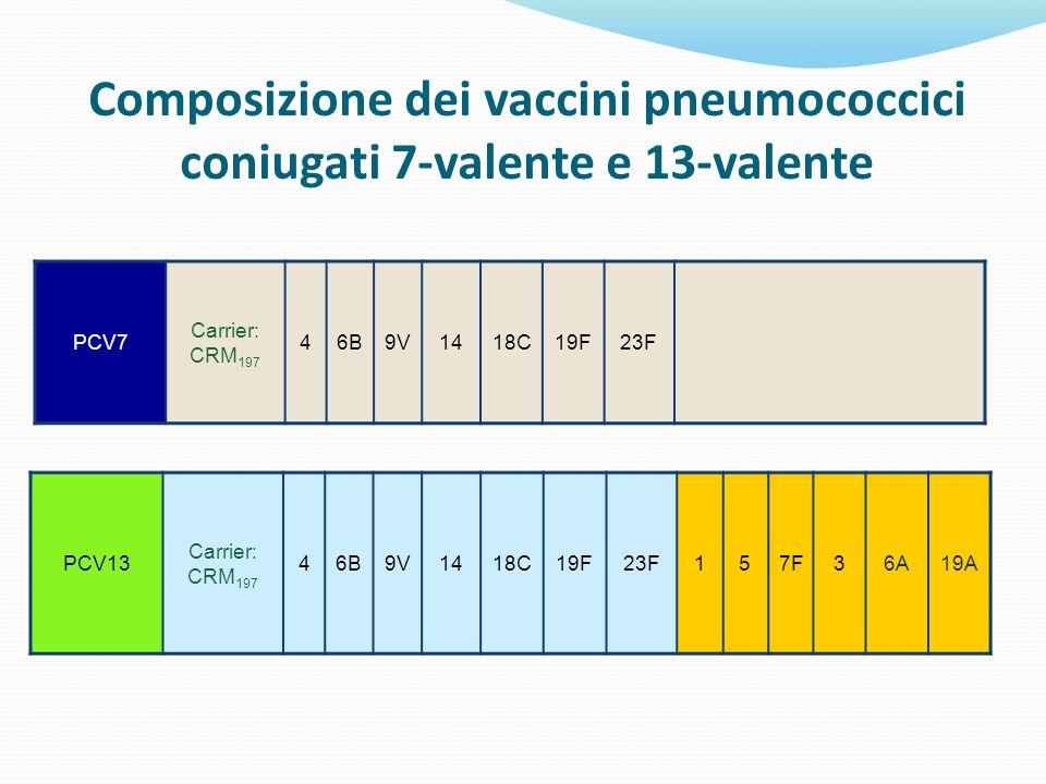 Composizione dei vaccini pneumococcici coniugati 7-valente e 13-valente