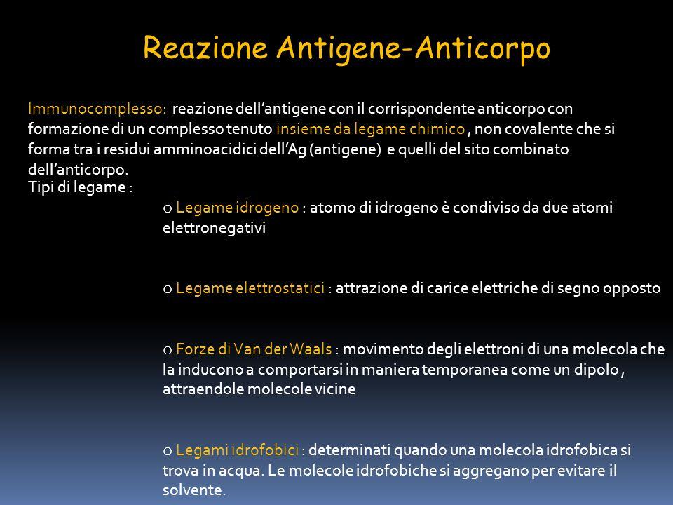 Reazione Antigene-Anticorpo