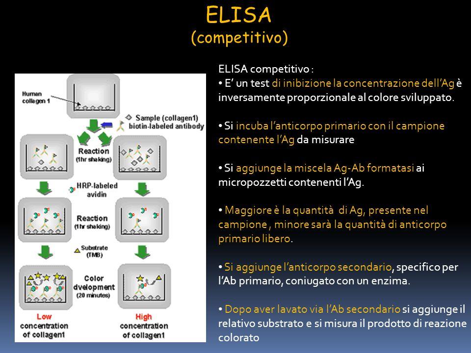 ELISA (competitivo) ELISA competitivo :