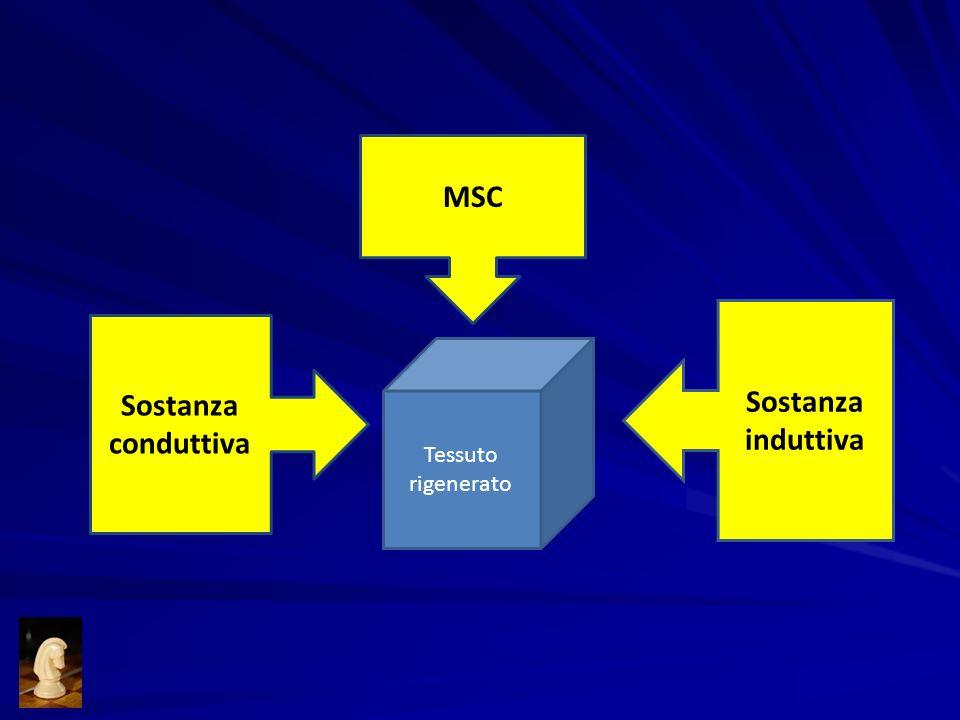 MSC Sostanza induttiva Sostanza conduttiva