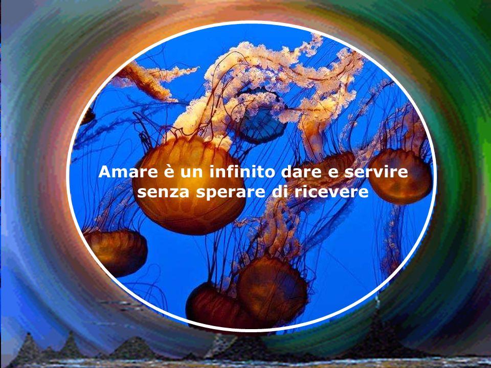 Amare è un infinito dare e servire senza sperare di ricevere