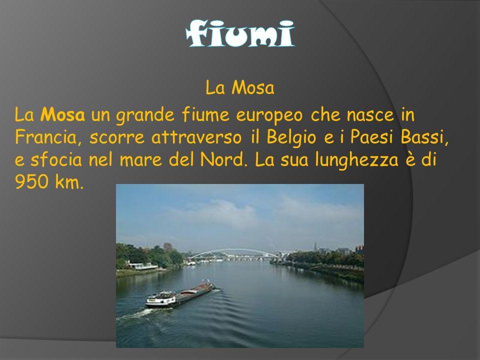 fiumi La Mosa.