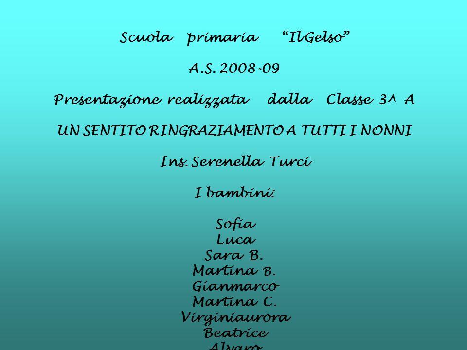 Scuola primaria Il Gelso A.S. 2008-09
