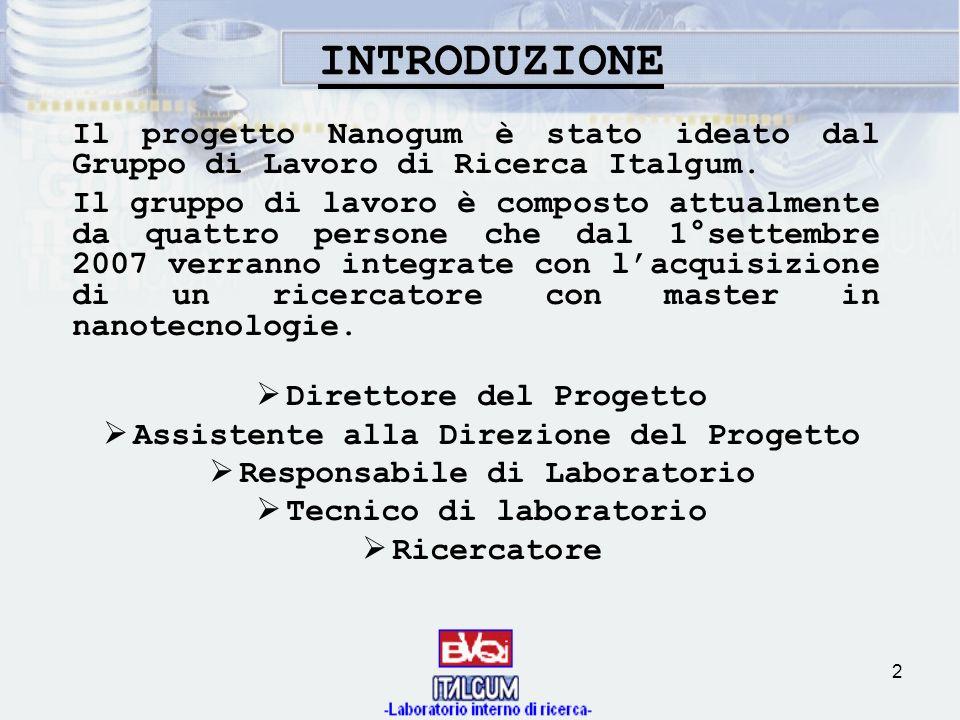 INTRODUZIONE Il progetto Nanogum è stato ideato dal Gruppo di Lavoro di Ricerca Italgum.