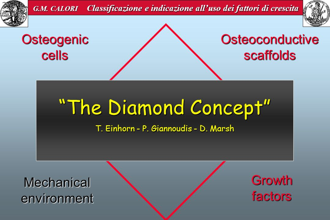 The Diamond Concept Osteogenic cells Osteoconductive scaffolds
