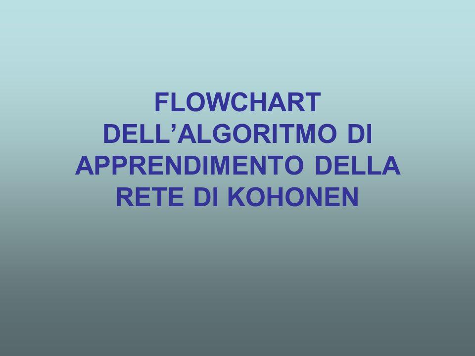FLOWCHART DELL'ALGORITMO DI APPRENDIMENTO DELLA RETE DI KOHONEN