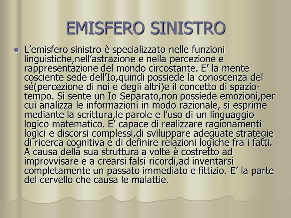 EMISFERO SINISTRO