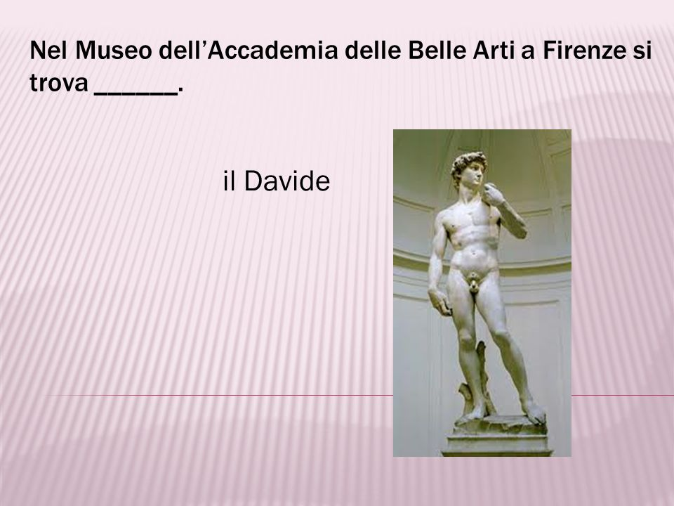Nel Museo dell'Accademia delle Belle Arti a Firenze si trova ______.