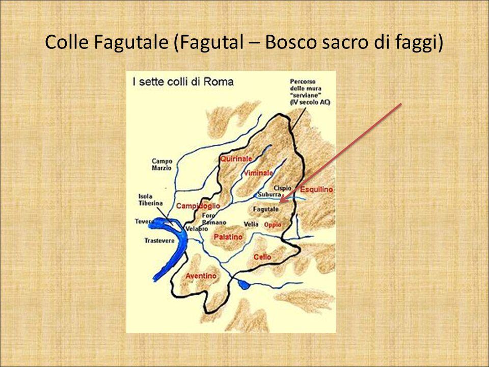 Colle Fagutale (Fagutal – Bosco sacro di faggi)