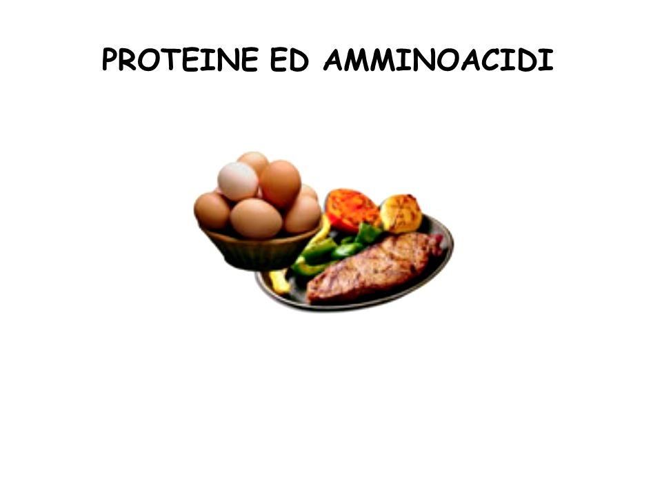 PROTEINE ED AMMINOACIDI