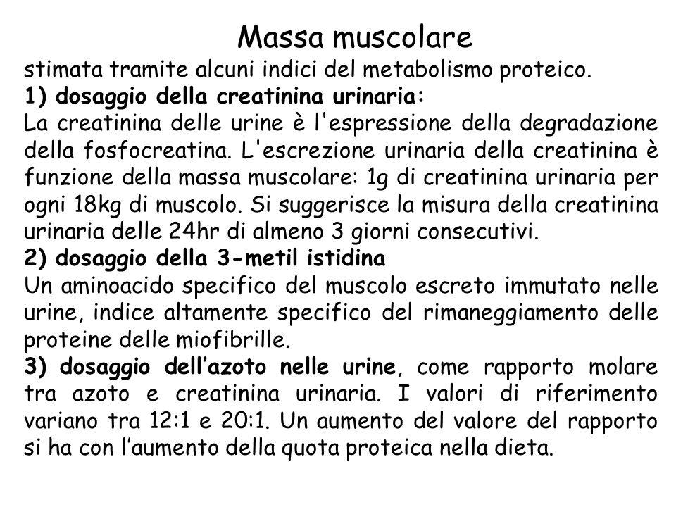 Massa muscolare stimata tramite alcuni indici del metabolismo proteico. 1) dosaggio della creatinina urinaria: