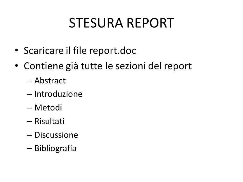 STESURA REPORT Scaricare il file report.doc