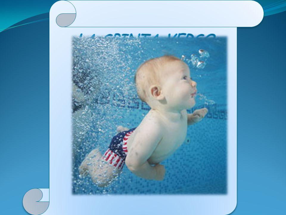 La spinta verso l'alto su un oggetto immerso in un fluido è pari al peso del fluido spostato dall'oggetto medesimo.