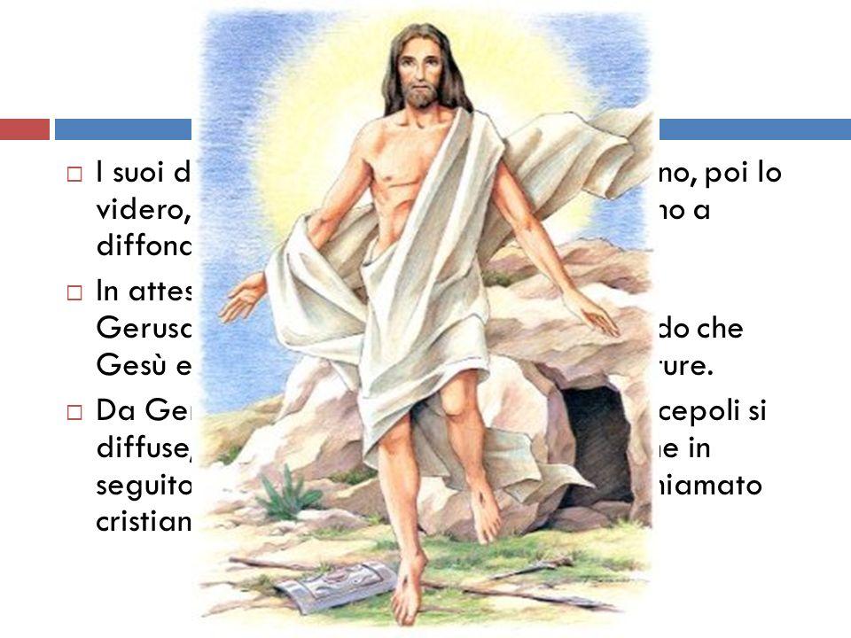 I suoi discepoli in un primo tempo fuggirono, poi lo videro, dopo la sua morte e incominciarono a diffondere la notizia che era risorto.