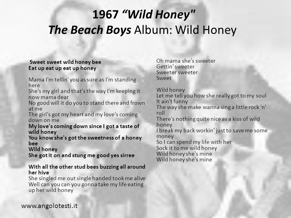 1967 Wild Honey The Beach Boys Album: Wild Honey